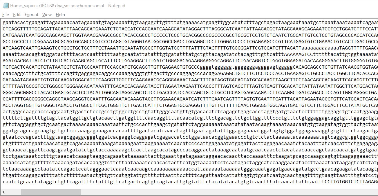 Notepad-copy-1