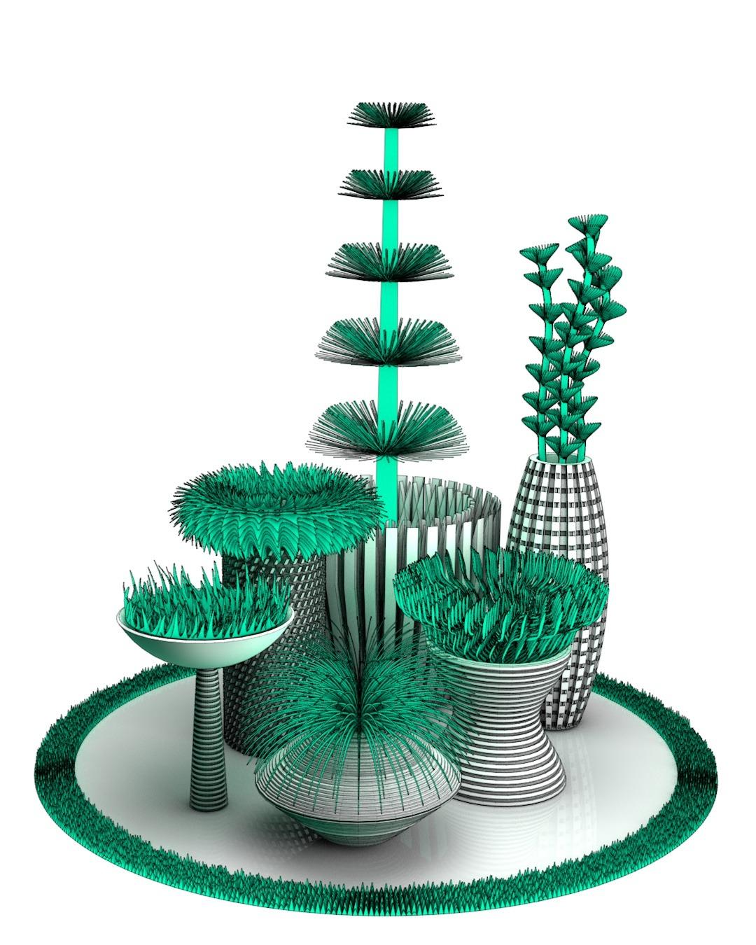 Plant000